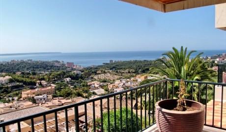 Image for Genova, Palma de Mallorca