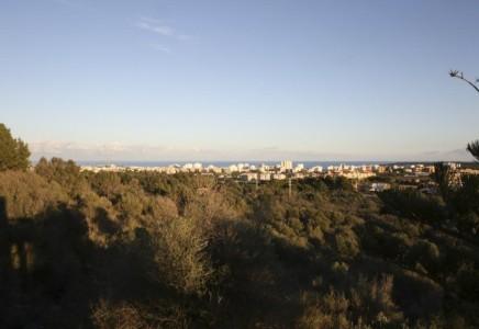 Image for Cala Millor, Mallorca