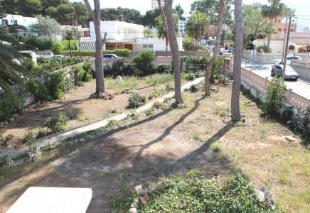 Image for Palma / Playa de Palma