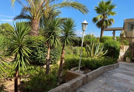 Image for San Agustin-Palma, Mallorca